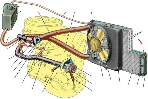 Интерактивная схема системы охлаждения двигателя