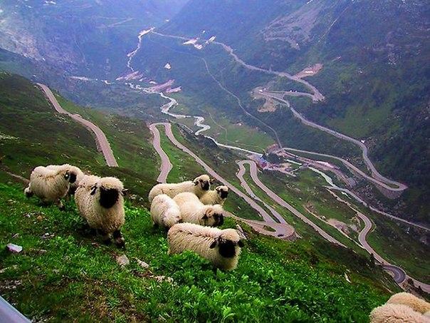 Топ-5 необычных дорог в мире. Топ-5 необычных дорог в мире 1